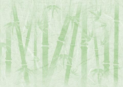 テクスチャ テクスチャー 背景 背景素材 バックグラウンド 竹林 竹 和柄 和風 竹やぶ 竹薮 節 自然 自然素材 素材 京都 古風な 緑 グリーン 伝統 ナチュラル ネイチャー しなやかな 森林 伐採 タケノコ 竹の子 和 日本 日本的な