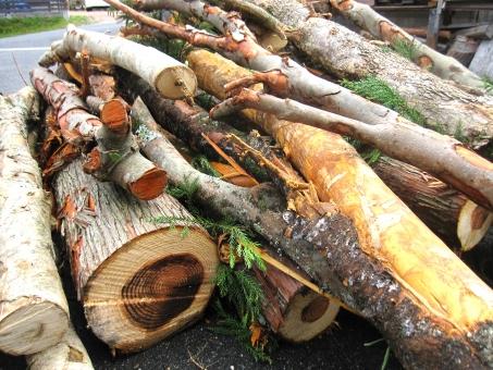 薪 薪の木 薪の木山積み 山積み まき 薪ストーブ ストーブ たくさん いっぱい 切る 間伐 伐採 き 木 色々な木 素材 材料 使える 自然 天然 植物 背景 テクスチャ エコ 環境