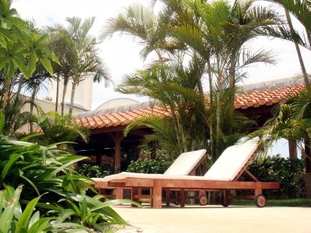 サマーベッド 2つ ヤシの木 植物 椰子の木 プールサイド リゾート 旅行 リフレッシュ 開放感 のんびり 風景 自然 景色 ホテル 無人 夏 現実逃避 緑 南国
