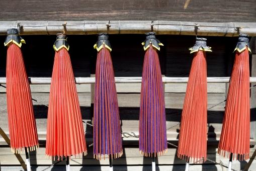 傘 和傘 かさ 赤 赤色 紫 紫色 和 和風 文化 工芸 工芸品 竹材 竹 蛇の目傘 番傘 日傘 吊る 吊るす 傘立て 道具 雨具 雑貨 伝統 伝統工芸 並ぶ カラフル レトロ アップ 屋外 無人 日本 沢山 たくさん 閉じる 閉じている
