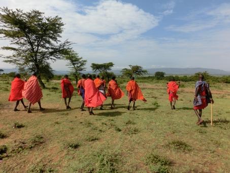 マサイ族 自然 ケニア アフリカ 人 青空 木 芝生 外国 外国人