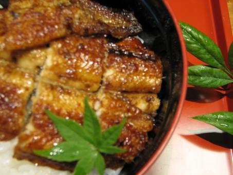 うなぎ 鰻 ウナギ 鰻の蒲焼き かば焼き 蒲焼き 蒲焼 夏バテ 防止 アップ 大きめ 夏パテ防止 夏の料理 夏 料理 うな丼 丼 どんぶり ご飯 ご飯もの 日本食 日本の食べ物 和食 和風 季節の食べ物 季節 季節感 伝統 タレ たれ 美味しい おいしい 土用 土用の丑の日 丑の日 スタミナ スタミナ料理