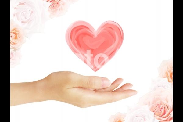 女性の手とハート(薔薇背景)の写真