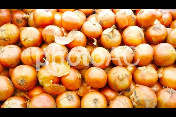 玉ねぎ テクスチャの写真