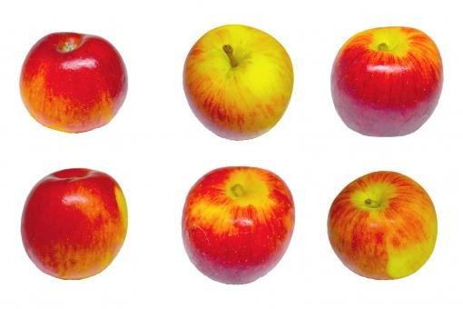 林檎切り抜きセット1の写真