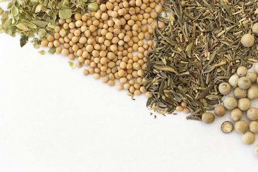 スパイス SPICE スパイシー 香辛料 調味料 シーズニング インド 料理 調理 クッキング 作る 混ぜる 入れる 食事 食べる 食 健康  体にいい 予防 防ぐ 治病 食事療法 食料 ローズマリー