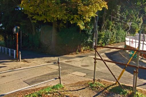 十字路 辻 道路 道 風景 景色 アスファルト 晴天 快晴 草木 樹木 木立 木 自然 植物 町中 住宅街 街中