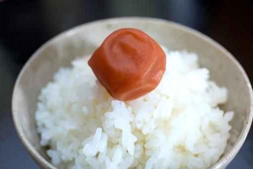 米 ご飯 ごはん 茶碗 お茶碗 白米 お米 コシヒカリ 食べ物 料理 和食 和風 フード 食物 日本食 和風料理 日本 和 食事 農業 梅干し 梅 新米 イメージ クローズアップ