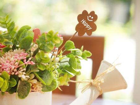 happy 花 観葉植物 幸せ 穏やか グリーン 緑 ジョーロ 風景 自然 快晴 午前 午後 クローバー ガーデン ガーデニング 庭 明るい 春 初夏 雑貨 住まい 住宅 テラス 四つ葉のクローバー 鉢植え