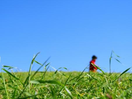 地平線 晴れ 青空 観光 潮岬 雲一つない 自然 草原 草 緑 原っぱ