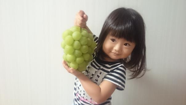 シャイン 子供 幼児 女児 子ども ぶどう 葡萄 child girl kids smile japanese 日本人 fruit 元気 嬉しい 大きい 果物 びっくり マスカット 女の子 園児