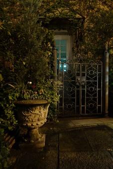 家 壁 つたう 蔦 蔓 門 窓 格子 ドア 玄関 門扉 鉄 錆びる 飾り 植物 木 葉 葉っぱ 花 緑 赤 植木鉢 植木 プランター 鉢 彫刻 石畳
