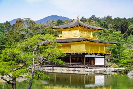 日本 関西 京都 金閣寺 世界遺産 文化財 金 輝く 建物 建築 建築物 観光地 観光 旅行 見物 木 樹木 自然 葉 緑 山 林 森林 水 池 水面 映る 室外 屋外 風景 景色 景観 歴史 伝統 古い