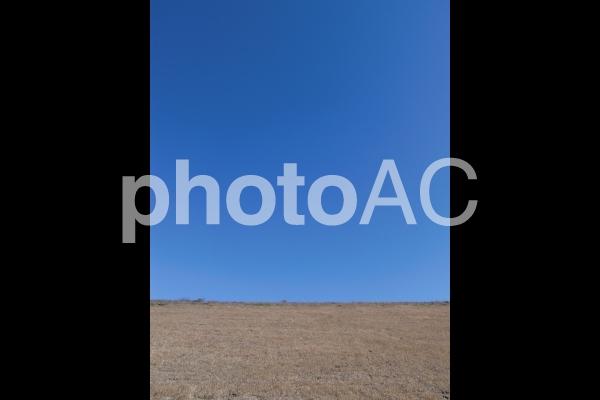秋の河川敷 2の写真