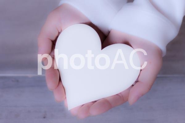 手の中のハートの写真