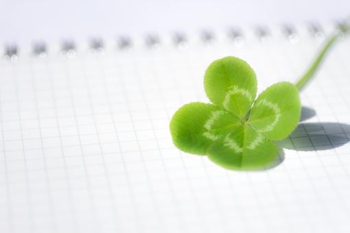 クローバー 植物 四葉のクローバー 草 四葉 ラッキー ラッキーアイテム 幸運 幸せ 緑 ノート 方眼 文具 四つ葉 四ツ葉 お守り