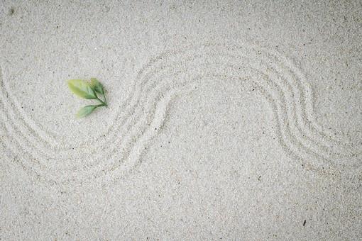 和 和風 禅イメージ 庭 枯山水 砂 砂紋 レーキ 日本 日本庭園 日本文化 庭園 わびさび 和寺 石庭 造園 伝統 白砂 風景 イメージ 京都  縁側 風景 緑 植物 葉 曲線
