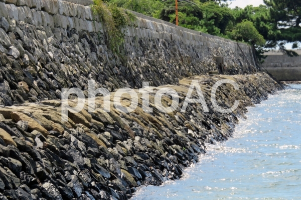海の石垣の写真