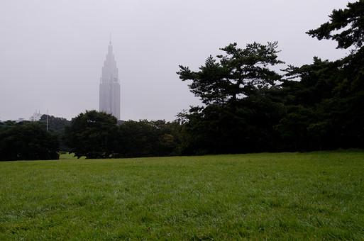 雨 濡れる 濡れた  水分 水  雨天 望遠 円形 自然 風景 植物 葉 草 葉っぱ 悪天候 屋外 野外 ウェット 自然背景 雨粒 レイン 森 林 樹木 ビル 建物 靄 霧 霞む 建造物 建築物 雨空