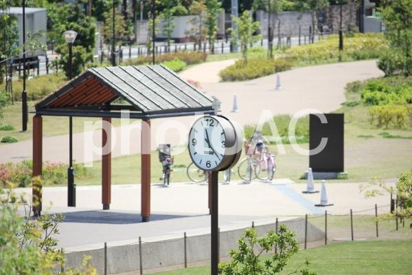 公園の時計の写真