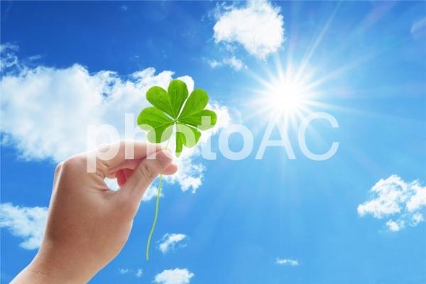 四つ葉のクローバーを太陽にかざす手の写真
