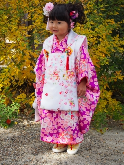 着物 子供 子ども 女児 お参り お寺 笑顔 紫 お祝い smile japanese child girl kimono 日本人 753 753 ひちごさん 七五三 女の子 髪型 ヘアー ヘヤー