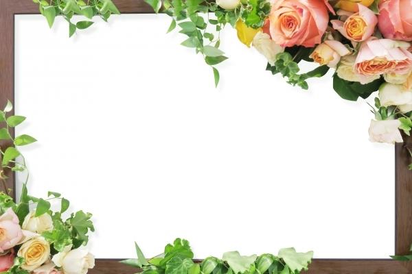 ウェルカムボードにお勧め花と木のフレーム背景の写真