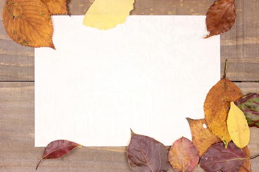 落ち葉フレーム1の写真