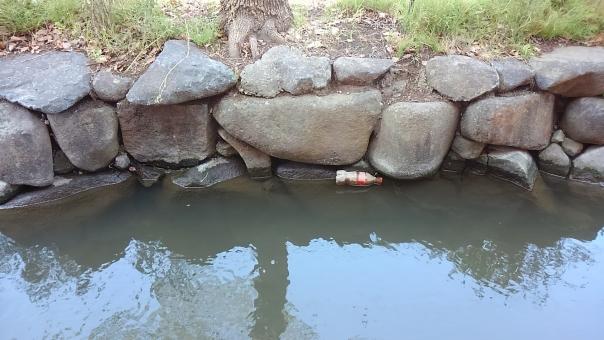 親水緑道 石 水 自然 草 土 川 緑道 木 汚い 濁った 濁っている 岩 枯葉 夏