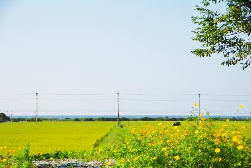 海の見える田園風景 1の写真
