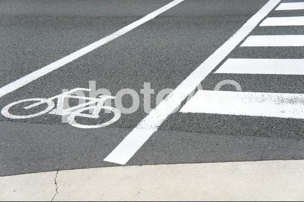 横断歩道2の写真