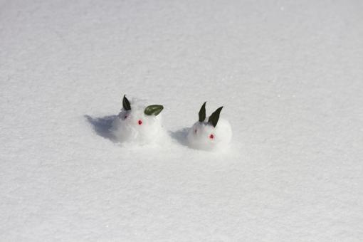 ゆきうさぎ 雪兎 雪ウサギ 冬 雪景色 雪原 南天 植物 葉 実 可愛い かわいい お正月 和 雪像 雪肌 雪遊び 親子 兄弟 ほのぼの