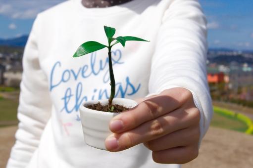新芽 新しい命 生命 生命保険 女の子 春 育てる 植物 培養 成長 青空 環境保護