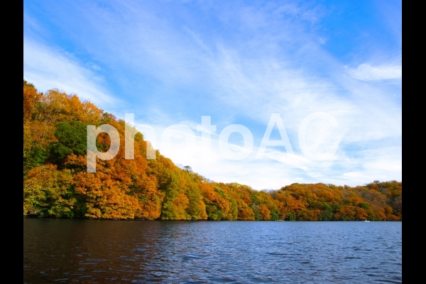一碧湖 紅葉の写真