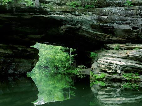 パキスタン 外国 熱帯 南国 南アジア 岩 岩場 険しい 危険 危ない 川 水 穏やか 水面 映る 反射 木 樹木 葉 葉っぱ 緑 林 森 森林 草 雑草 野草 雑草 層 自然 植物 風景 景色 無人 屋外 室外