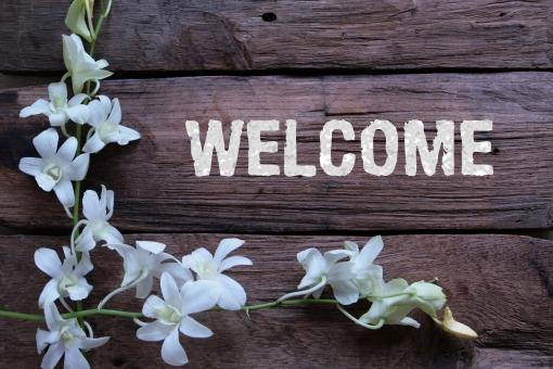 ようこそ 歓迎 いらっしゃいませ ボード 看板 背景 白い花 ラン