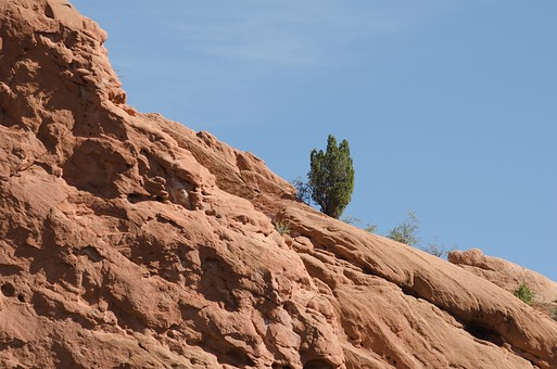 アメリカ 米国 アメリカ合衆国 ニューメキシコ州 サンタフェ 外国 外国風景 海外 海外風景 アメリカの宝石 聖なる信仰 景色 風景 観光 旅行 自然 植物 樹木 岩 岩場 崖 赤土 粘土 地質 大地