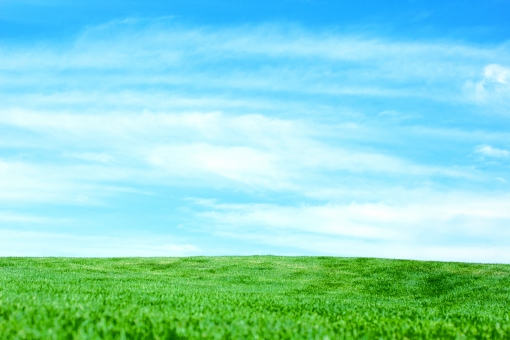 植物 明るい ナチュラル 屋外 空 青空 晴れ 緑 風景 景色 コピースペース 野外 綺麗 自然 加工 背景 雲 草 草原 芝 環境 広場 芝生 原っぱ 爽やか 地面 全面 水平線 壁紙 野原 一面 ゴルフ場 テクスチャ エコロジー 鮮やか テキストスペース リラクゼーション 天然芝 青々 安らぎ 地平線 バックグランド