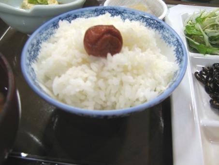 ご飯と梅干 白米 ごはん ゴハン 新米 米 こめ ライス 白ご飯 日本米 炊いたご飯 炊きたて 梅干 うめぼし 酸っぱい すっぱい おいしい 日本食 日本的 日本風 日の丸 和風 和食 和 シンプル イメージ 作物 農作物 収穫 穀物 食品 食べ物 フード 栄養 こしひかり コシヒカリ あきたこまち ササニシキ ささにしき 素材