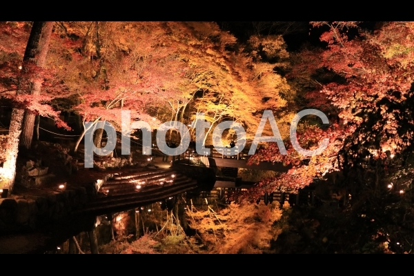 夜の岩屋堂公園 ライトアップの紅葉と水面の逆さ紅葉の写真