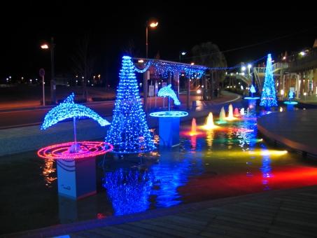 冬 冬休み 1月 2月 12月 寒い 旅行 鹿児島 イルミネーション イルカ 赤 青 黄色 ピンク 水 港 光 ドルフィンポート
