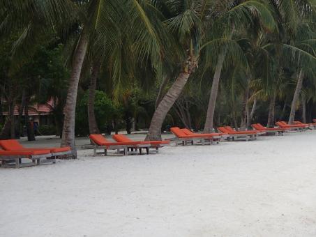 モルディブ モルジブ ビーチ ビーチチェア サマーベッド ヤシの木 リゾート ビーチリゾート 海 インド洋 砂浜 カニフィノール