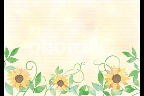 ヒマワリと葉_水彩イエロー背景の写真