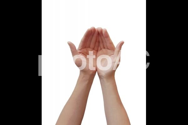 手のしぐさ 両手で差し出す手の平の写真