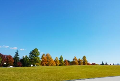 紅葉 秋 もみじ モミジ 空 公園 葉 あき はっぱ こうよう autumn やま 青空 秋晴れ バックグランド もみじがり 綺麗 きれい 山 風景 紅葉狩り 山頂 快晴 落ち葉 色 森 林 植物 季節 背景 もみじ狩 コピースペース 行楽シーズン 木 枯葉 モミジ狩り 景色 キレイ 晴れ 信州 長野 青 緑 黄 赤 あか オレンジ 清々しい すがすがしい ハイキング 風 太陽 日光 紫外線 空気 バックグラウンド 自然 ナチュラル ハガキ マイナスイオン 絵はがき 10月 11月 雲 日差し uvカット 白 紫外線対策 あお 遠足 和風 くも ピクニック 素材 テクスチャ 9月 気分がよい 明るい 日本 晴 天気 散歩 コメントスペース ポストカード 絵ハガキ ポスター 秋晴 芝生 コピー スペース コメント さんぽ バック