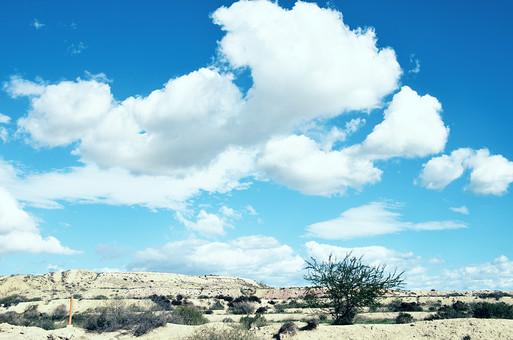 スペイン 外国 海外 ヨーロッパ 欧州 外国風景 海外風景 自然 空 雲 青空 晴天 晴れ 景色 風景 大地 土 エネルギー 乾燥 植物 砂  草 草むら 雑草 影 雲の影