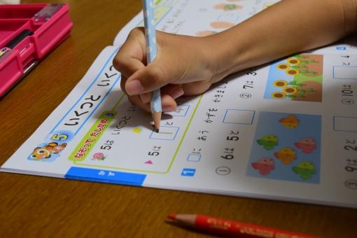 子供 鉛筆 宿題 勉強 レッスン 学び 学ぶ 夏休みの友 頑張る ドリル 算数 小学生 数字 夏休み 家庭学習 自宅学習 学習 一年生 学校 学力 解答 解く 計算 考える 自習 集中 ワーク 問題集
