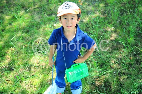 虫採り中の子供12の写真