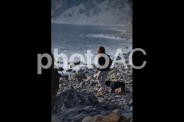 海辺と女の子とフレンチブルドッグの写真