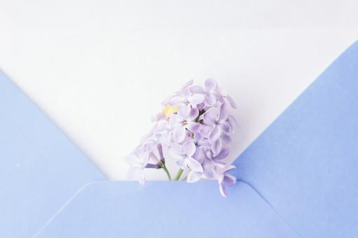 花と雑貨2の写真